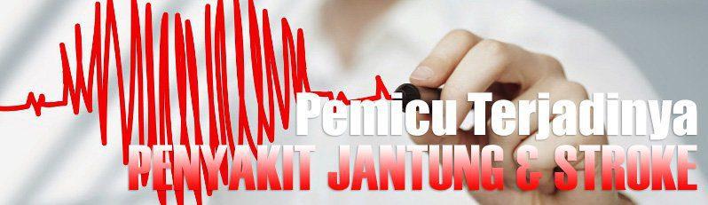 Pemicu Penyakit Jantung Dan Stroke