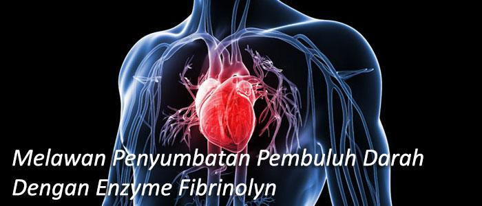 Enzim Fibrinolysis – Melawan Penyumbatan Pembuluh Darah!