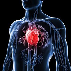 Ciri-Ciri Penyakit Jantung, Kenali Sebelum Terlambat!