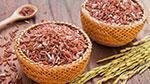 beras merah sebagai makanan penurun kolesterol