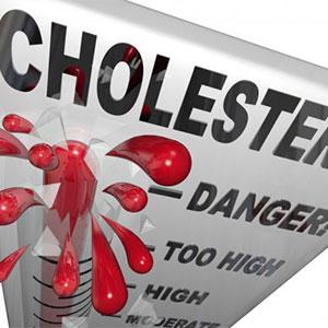 Makanan Penurun Kolesterol | Berbagai Makanan Penurun Kolesterol LDL