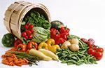 sayuran sebagai makanan penurun kolesterol