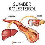 sumber kolesterol penyebab stroke non hemoragik