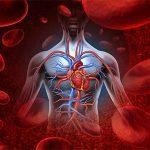 jenis-jenis penyakit jantung yang dapat menyerang kita