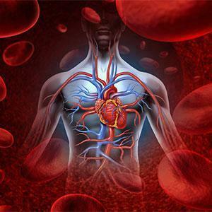 Makanan penyebab penyakit jantung